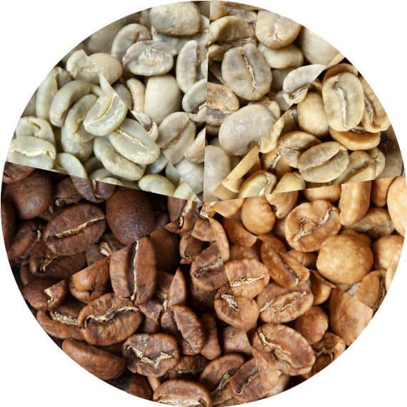 evolution-cafe-grain.jpg