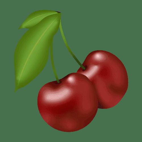 illustration de deux cerises