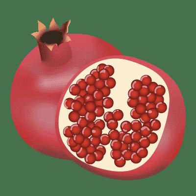illustration du fruit la grenade